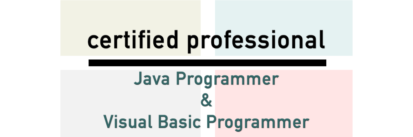 Certified Java & Visual Basic Programmer