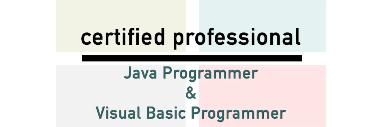 Certified Java & Visual Basic Programmer